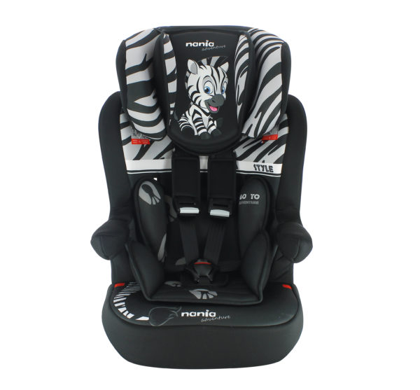 imax-zebre