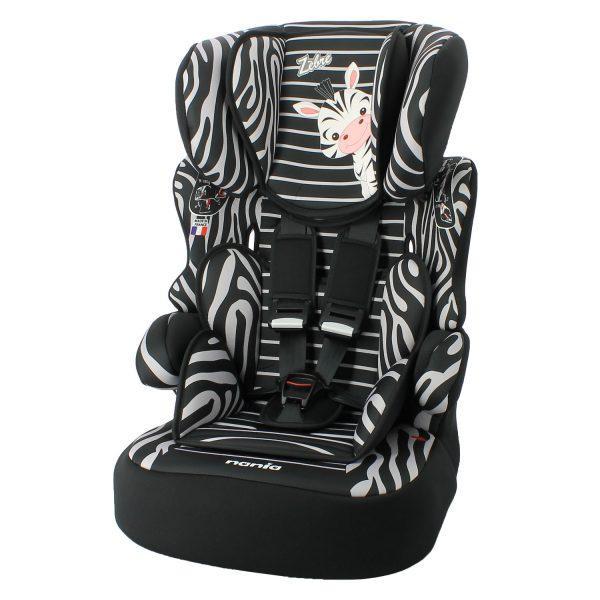 beline-zebre